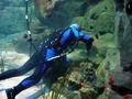 Underwater cleaner2.jpg