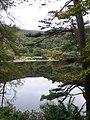 Upper Lake, Glendalough - geograph.org.uk - 1550723.jpg