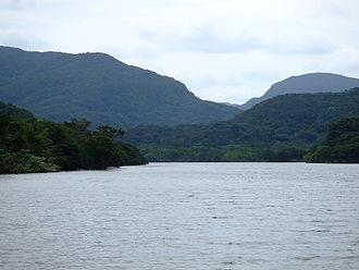 Iriomote Island - Image: Urauchi River Iriomote 2007 04 05