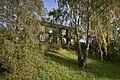 Våningshuset på Majer 27-08-19.jpg