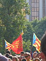 V catalana P1250537.jpg