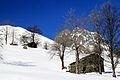 Vallone di Ovarda - Valle di Viù (5505748160).jpg