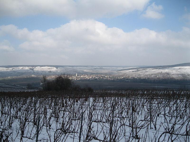 Vue de Damery et de la vallée de la Marne, depuis le nord de Vauciennes.