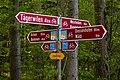 Velo-Wegweiser im Tägerwiler Wald.jpg
