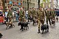 Veteranendag 2014 (14533947225).jpg
