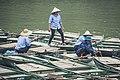 Vietnam fishermen (Unsplash).jpg