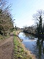 View east from near bridge 66, Stratford-upon-Avon canal - geograph.org.uk - 1732552.jpg