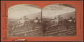 View of a home in Stamford, N.Y, from Robert N. Dennis collection of stereoscopic views 2.png