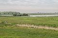 Vogelkijkhut Lauwersmeer gebied 3.jpg