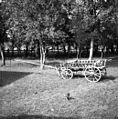 Voziček za futr pripeljat, za brane, plug, v maln (mlin) peljat, prašičke na sejem), Ledeča vas 9 1952.jpg