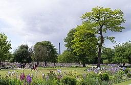 Vue sur la Tour Eiffel du jardin des Tuileries