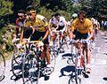 Vuelta España 1989.jpg