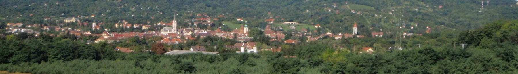 WV banner Vas county Köszeg city view.jpg