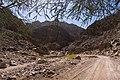 Wadi Gnai 2020-03-08-14.jpg