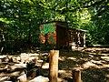Waldkindergarten Kinderwald Tauberbischofsheim 2.jpg