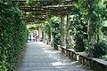Walkway at Hever Castle, Hever, Kent - geograph.org.uk - 1382277.jpg