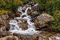 Wandeltocht rond Lago di Pian Palù (1800 m). in het Nationaal park Stelvio (Italië) 28.jpg