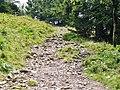 Wanderweg zwischen Feldberg und Baldenweger Hütte - panoramio.jpg