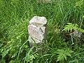 Wandowo, stary cmentarz - panoramio (1).jpg