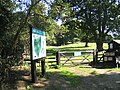 Warley Place Nature Reserve, Great Warley - geograph.org.uk - 50673.jpg