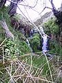 Waterfall Dodd Beck - geograph.org.uk - 175314.jpg