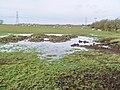 Waterlogged Field Near Eskham House - geograph.org.uk - 1170946.jpg
