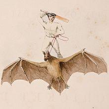 Cricketspieler auf einer riesigen Fledermaus