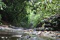 Way to Napittachora Waterfall-3.jpg