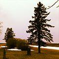 Wayside Rest - Gibbon, MN - panoramio.jpg
