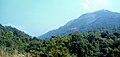 Western Ghats view near Kukke.jpg