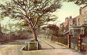 Westoe - Postcard of Westoe, 1904