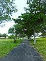 Westview Cemetery - Pompano Beach (9).jpg