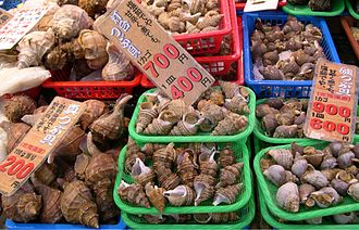 Whelk - Several different species of large whelks in the family Buccinidae on sale at a fish market in Japan.