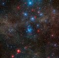 Wide-field view of the open star cluster NGC 2547.jpg