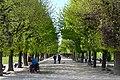 Wien DSC 3173 (9540738925).jpg