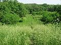 Williamson Mound, stairs looking downward.jpg