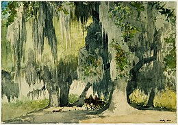 Winslow Homer - Among the Oaks.jpg