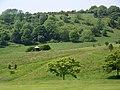 Worthing Golf Course - geograph.org.uk - 1334797.jpg