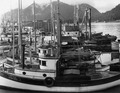 Wrangell Narrows, Alaska. Petersburg small boat harbor. Looking west from end of pier along public - NARA - 298795.tif