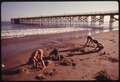 YOUNGSTERS PLAY IN THE SAND AT THE GAVIOTA STATE BEACH. IN THE BACKGROUND IS THE PIER. THE AREA IS SCHEDULED FOR... - NARA - 557511.tif