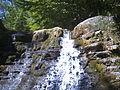 Zheravitsa river - panoramio - marintsochev.jpg