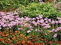 Ziedi pie pagasta mājas, Robežnieki, Robežnieku pagasts, Krāslavas novads, Latvia - panoramio.jpg