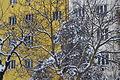 Zima na Břevnově 2013.JPG