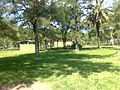 Zoo Municipal de Mercedes - panoramio (31).jpg