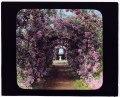"""Armsea Hall,"" Charles Frederick Hoffman Jr. house, Narragansett Bay, Newport, Rhode Island. Rose Trellis LCCN2007685928.tif"