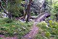 Μεσορόπη - panoramio (6).jpg