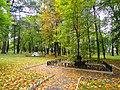 Біля липи Т.Г. Шевченка у Седневі (парк садиби Лизогубів).JPG