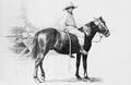 Волинський селянський хлопчик на коні.png