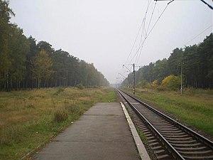 Chernihiv–Ovruch railway - Image: Зупиночна платформа Подусівка 1470200