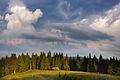 Кинута колиба біля гори Вихід.jpg